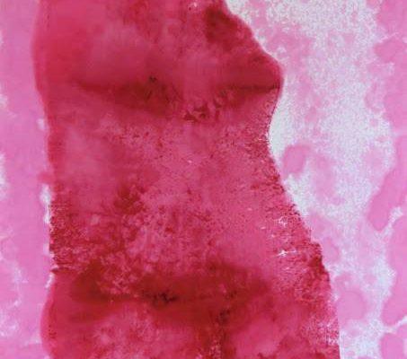 'Zittende Kijkt', L 50 x B 65, Monotype, 2015