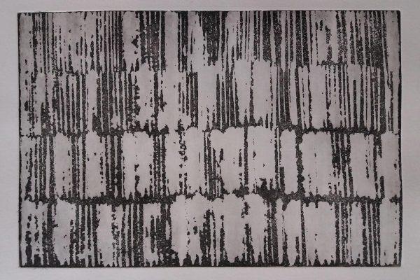 'Schoonheid in verval', L36 X B28, Ets, 2019